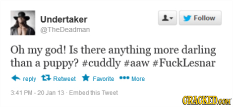 Undertaker L- Follow TheDeadman Oh my god! Is there anything more darling than a puppy? #cuddly #aaw #FuckLesnar reply 13 Retweet Favorite More 3:41 P