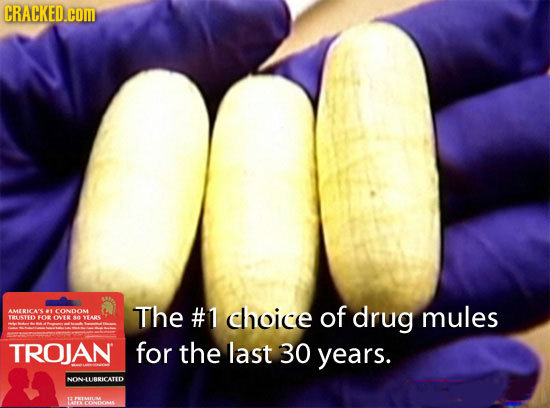 CRACKED.COM AMERICAS -1 CONDOM The #1 choice of drug mules TRUSTEO O ONEANTARS TROJAN for the last 30 years. NONHLURRICATED YOECMAE