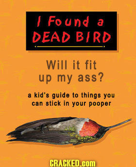 Found a DEAD BIRD Will it fit up my ass? a kid's guide to things you can stick in your pooper CRACKED.cOM