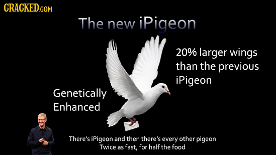 The new ipigeon 20% larger wings than the previous iPigeon Genetically Enhanced There's iPigeon and then there's every other pigeon Twice as fast, for