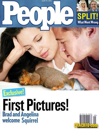 People JUNE12013 SPLIT! What Went Wrong Exclusive! First Pictures! Brad and Angelina 211 welcome Squirrel CRACKED.COM