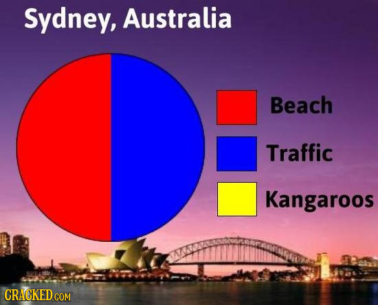 Sydney, Australia Beach Traffic Kangaroos