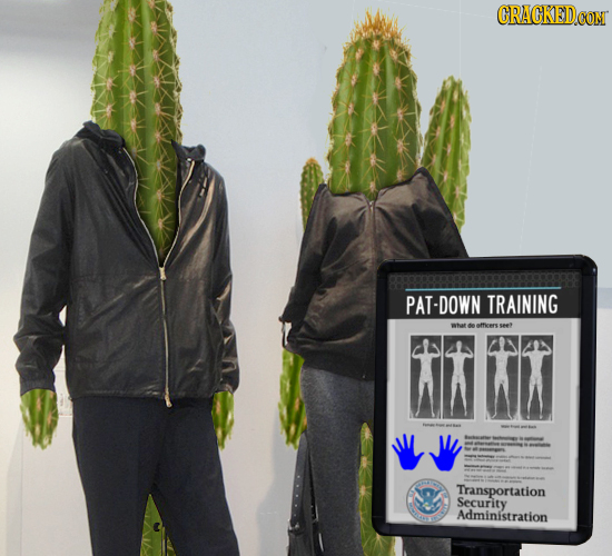 CRACKEDCO PAT-DOWN TRAINING what de aficers wt - T Transportation Security Administration