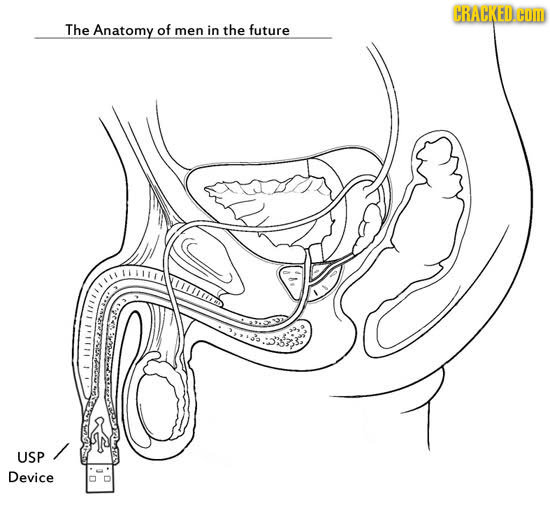 CRACKED. COm The Anatomy of men in the future FHRED USP Device