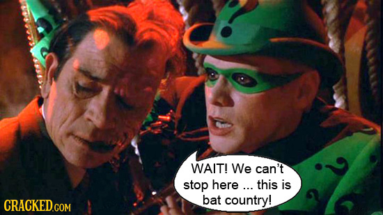 WAIT! We can't stop here ... this is bat country!