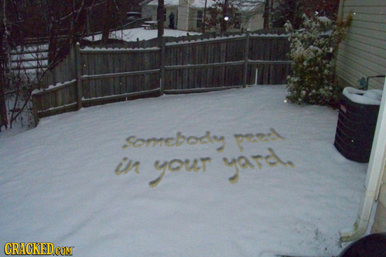 somebody preel in your yard, CRACKED CONT
