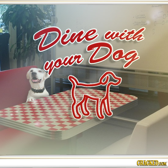 67t Dine with Dog your CRACKEDOON