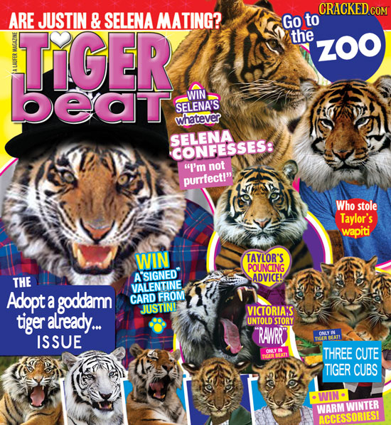 CRACKED cO ARE JUSTIN & SELENA MATING? Go to TIGER the ZOO AD beat LAUT WIN SELENA'S whatever SELENA CONFESSES: I'm not purrfect!. Who stole Taylor'