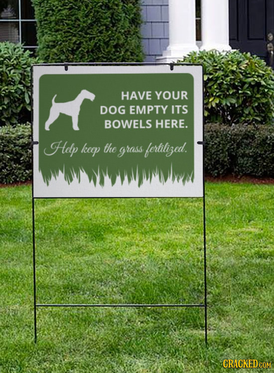 HAVE YOUR DOG EMPTY ITS BOWELS HERE. Help keap the grass fertiliged.
