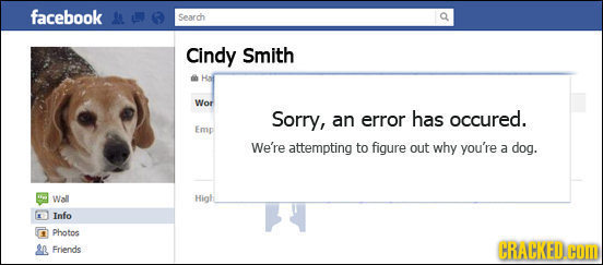facebook Sarch Cindy Smith Wor Sorry, an error has occured. Emp We're attempting to figure out why you're a dog. Wall High Info Photo Friends CRACKED.