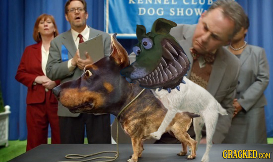 DOG SHOW CRACKED CON