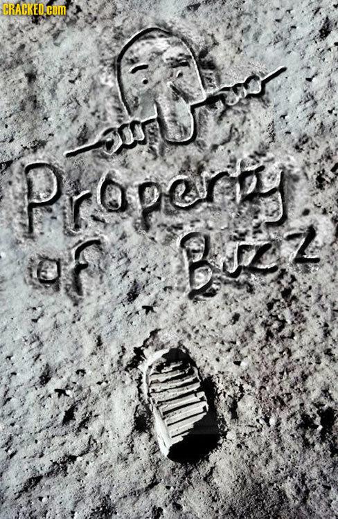 CRACKED.COM rs Propergy BL Z