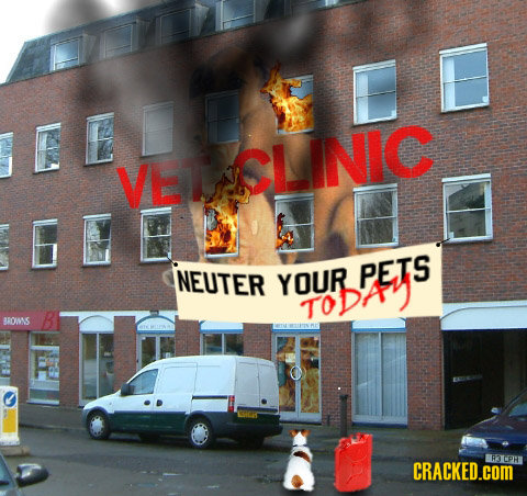 ED LE VE CLINIC NEUTER YOUR PETS oDAY BROMS CRACKED.COM