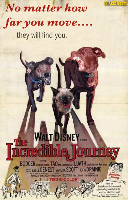 No CRACKED COm matter how far you move.... they will find you. WALT DISNEY IncredibleJourney The preseets BODGER Feitarine TAO LUATH the Bull Terrier