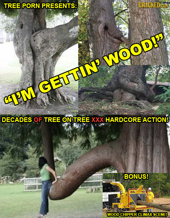 TREE PORN PRESENTS: CRACKEDcO WOOD! GETTIN' I'M DECADES OF TREE ON TREE XXX HARDCORE ACTION! BONUS! WOOD CHIPPER CLIMAX SCENE!