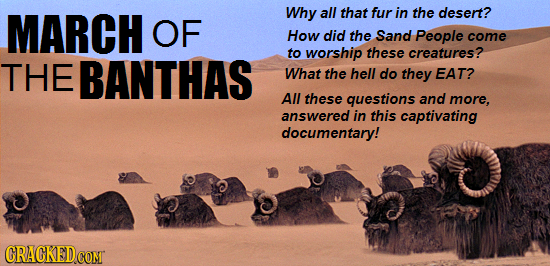 MARCH Why all that fur in the desert? OF How did the Sand People come to worship these creatures? THE BANTHAS What the hell do they EAT? All these que