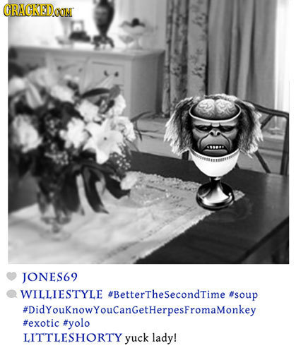 CRACKEDCO JONES69 WILLIESTYLE #BettertheSecondTime #soup #DidYouKnowYouCanGetHerpesFromaMonkey #exotic #yolo LITTLESHORTY yuck lady!