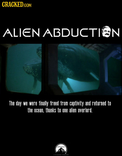 CRACKED.COM ALIEN ABDUCTIEN The day we were finally freed from captivity and returned to the ocean. thanks to one alien overlord. -