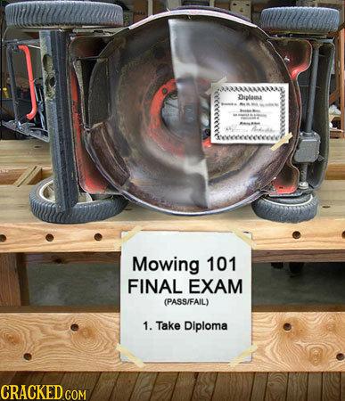 Diploia Mowing 101 FINAL EXAM (PASS/FAIL) 1. Take Diploma CRACKED COM