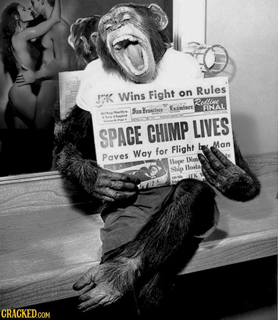 J7K Wins Fight Rules on Redle Erarises FINAL Sap Examinee SPACE CHIMP LIVES Man for Flight be Paves Way llope Dim Ship llola IEK CRACKED.COM COM