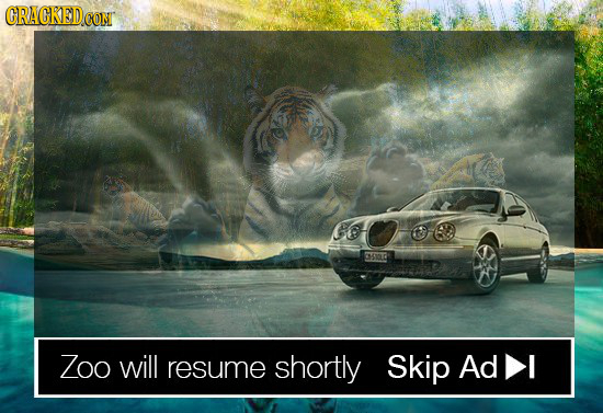 CRAGKED CONT o 5010 7oo will resume shortly Skip Ad