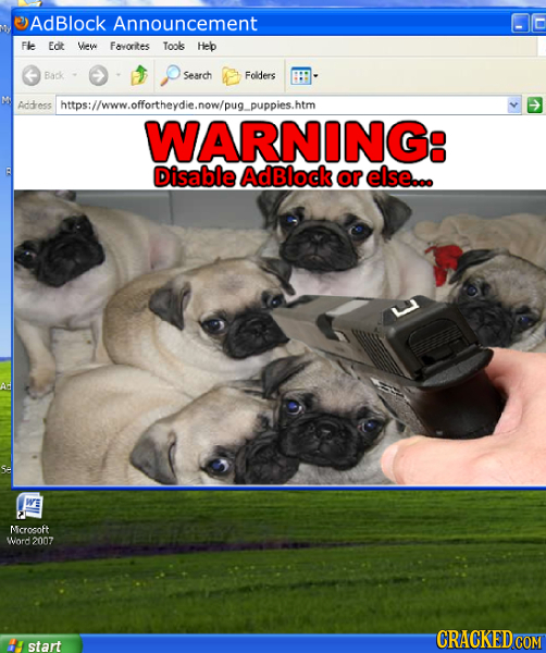 AdBlock Announcement FlE Edt View Favorites Tools Heb Back Search Folders Addres shtps://www.offortheydie.now/pug.puppies.htm WARNING: Disable AdBlock