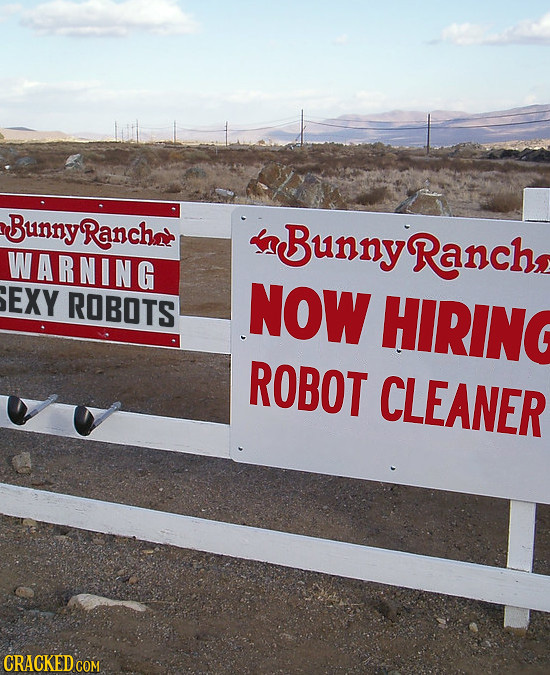 BunnyRanchat Bunny WARNING Ranch EXY ROBOTS NOW HIRING ROBOT CLEANER CRACKED COM