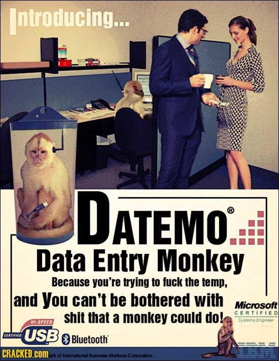 Introducing... DATEMO ATEMO. Data Entry Monkey Because you're trying to fuck the temp, and you can't be bothered with Microsoft shit that monkey could