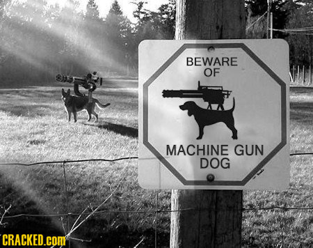 BEWARE OF MACHINE GUN DOG CRACKED.COM