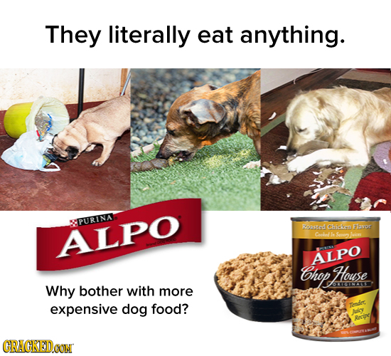 They literally eat anything. PURINA Roasted Chicien Flavor ALPO Coohnd he Sooen ALPO hop House Why O1CINALE bother with more expensive dog food? Tdes