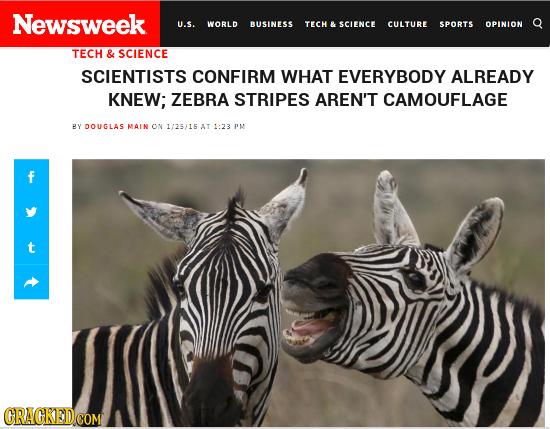 Newsweek Q U.S. WORLD BUSINESS TECH & SCIENCE CULTURE SPORTS OPINION TECH & SCIENCE SCIENTISTS CONFIRM WHAT EVERYBODY ALREADY KNEW; ZEBRA STRIPES AREN