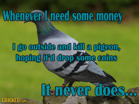 Whenever I need some money 0 go outside and kill a pigeon, hoping it'd drop some coinS It never does... CRACKED COM