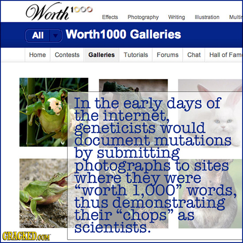 Worth' 1000 Effects Photography Writing Illustration Multin All Worth1000 Galleries Home Contests Galleries Tutorials Forums Chat Hall of Fam In the e