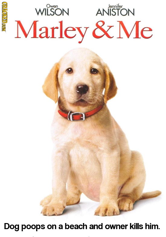 CRACKEDOON Owen Jennifer WILSON ANISTON Marley & Me Dog poops on a beach and owner kills him.