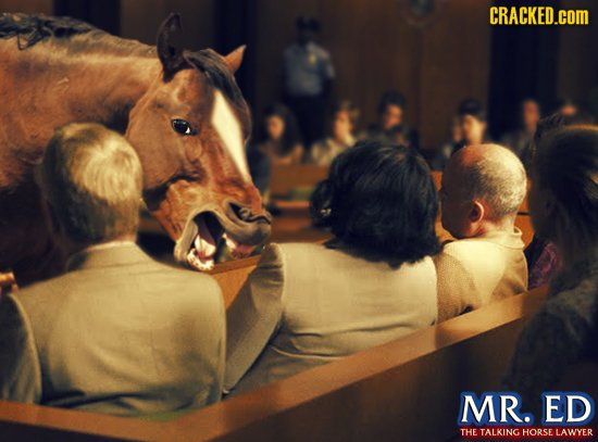 CRACKED.cOM MR. ED THE TALKING HORSE LAWYER