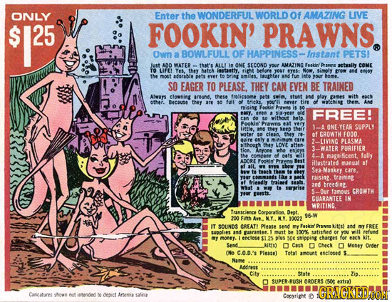 ONLY Enter the WONDERFUL WORLD Of AMAZING LIVE $125 25 FOOKIN' PRAWNS. Own a BOWLFULL OF HAPPINESS- -Instant PETS! Just ADD WATER that's ALL Im ONE SE
