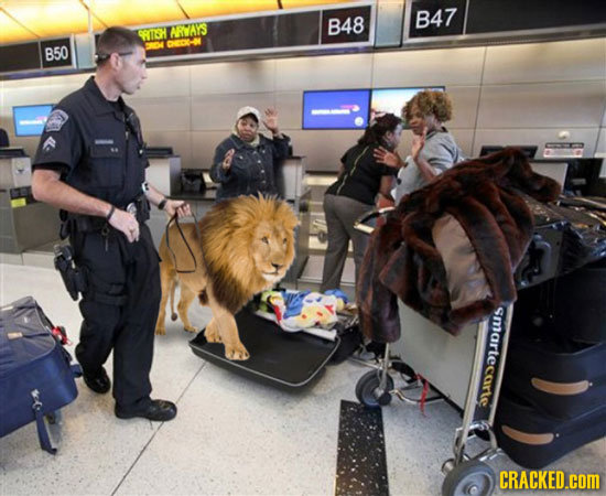 If TSA Security Measures Were Even More Invasive