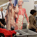 If TSA Security Measures Were Even More Invasive