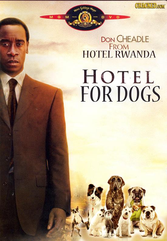 CRACKEDCON Goldarya Maer wetro M DON CHEADLE FROM HOTEL RWANDA HOTEL FOR DOGS