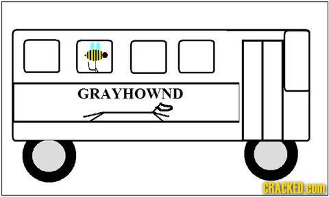 GRAYHOWND