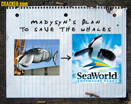 CRACKED.COM mdysyn's PLAN ITo SAUE THE WHALES T SeaWorld. ADVENTURE PARKS