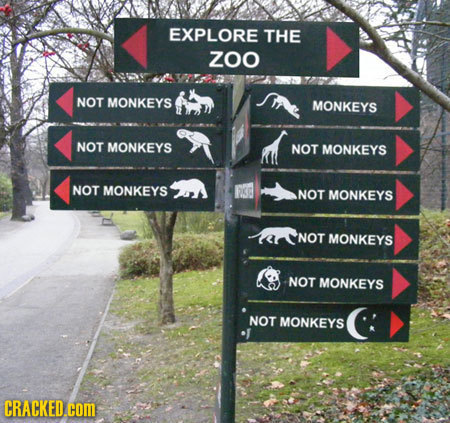 If Signs Were Actually Helpful