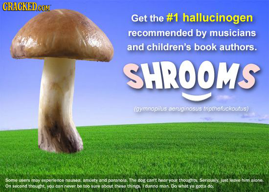 CRACKEDC COMT Get the #1 hallucinogen recommended by musicians and children's book authors. SHROOMS (gymnopillis aeruginosus tnpthefuckoutus) Some use