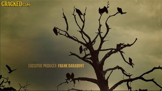 CRACKED COM EXECUTIVE PRODUCER FRANK DARABONT