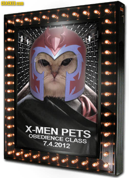 CRACKED. HOm X-MEN PETS OBEDIENCE CLASS 7.4.2012