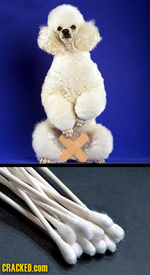 20 Terrifying Theories About How They Make Famous Products