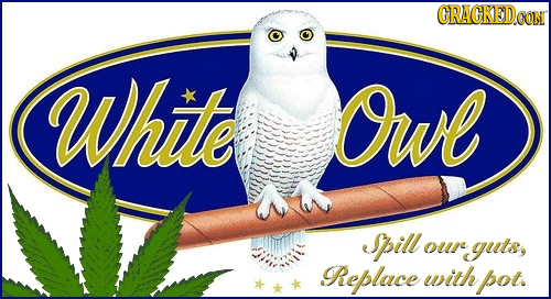 GRACKEDG CoN Whute Owl Spill oure guts, Replace with pot.