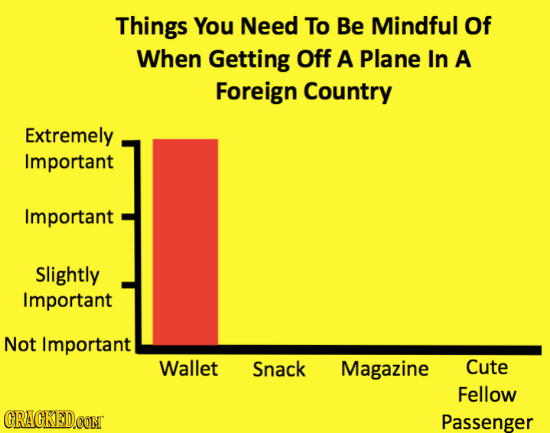 Things You Need To Be Mindful Of When Getting Off A Plane In A Foreign Country Extremely Important Important Slightly Important Not Important Wallet S