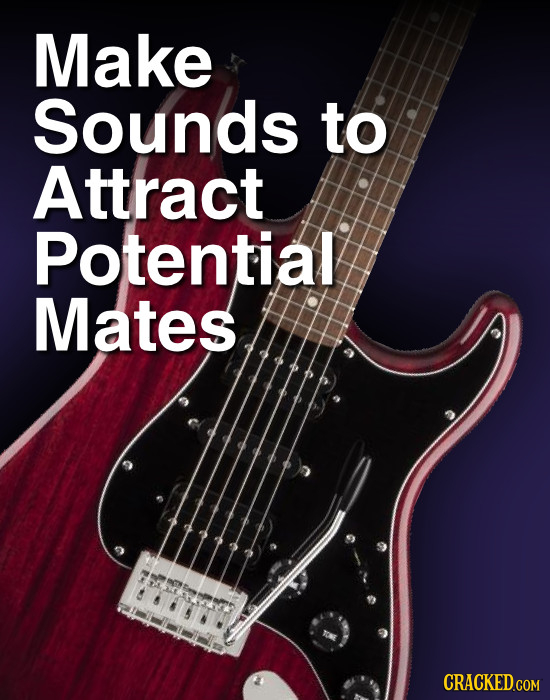 Make Sounds to Attract Potential Mates CRACKED.COM