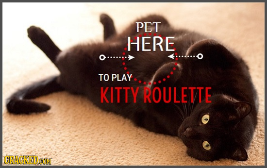 PET HERE TO PLAY KITTY ROULETTE CRACKED